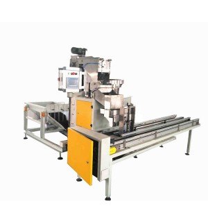 High Speed Weighing Box Packing Machine for Various Nails Picture Show