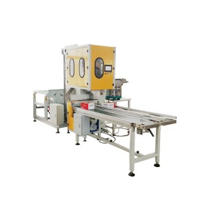 Automatic Vertical Fastener Nails Box Packing Machine