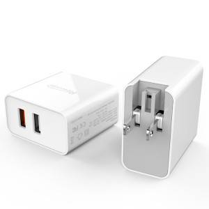 30W Dual Port Wall Charger with smart IC and Foldable Plug