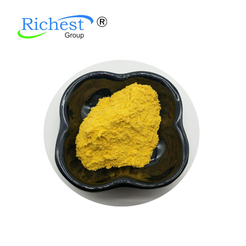 Pure Natural Raw Material Riboflavin 83-88-5 Featured Image