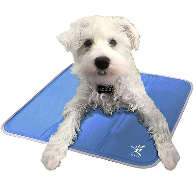 Dog Bed cooling Mat Soft Crate Mat with Anti-Slip Bottom Pet Mattress for Dog Sleeping