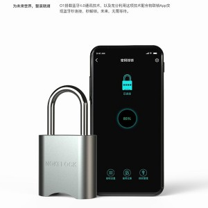 Roadragon Round Edge Padlock Fingerprint Bluetooth Waterproof asma kilit