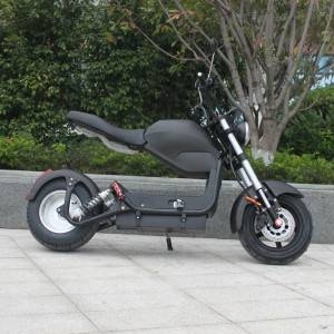 citycoco electric scooter Rooder r804-c1
