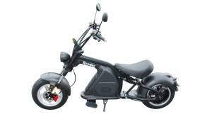 Rooder Runner citycoco harley electric scooter r804-m8 2000w 30ah EEC COC wholesale price