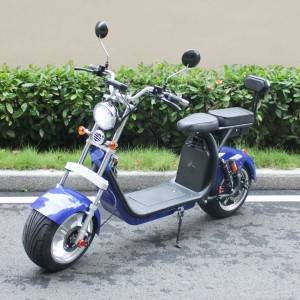 citycoco 3000w electric scooter Rooder r804z