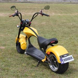 citycoco chopper Rooder r804 – m1 with 2000w 20ah 45km/h wholesale price