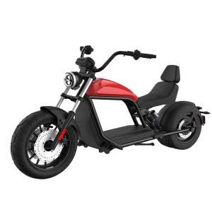citycoco holland warehouse china factory directly harley elektrische chopper for sale
