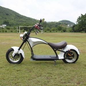 harley scooter electric Rooder r804-m1 with eec coc 2000w 28a
