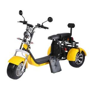 holland warehouse adult 2000w 60V 40Ah 20Ah removable battery EEC COC citycoco tricycle 3 wheel electric scooter