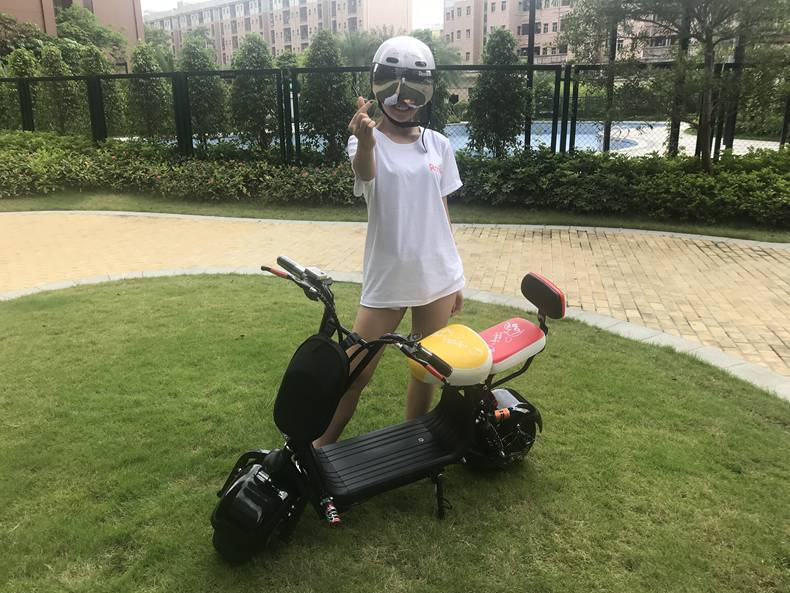 hot selling eec coc citycoco electric scooter (11)