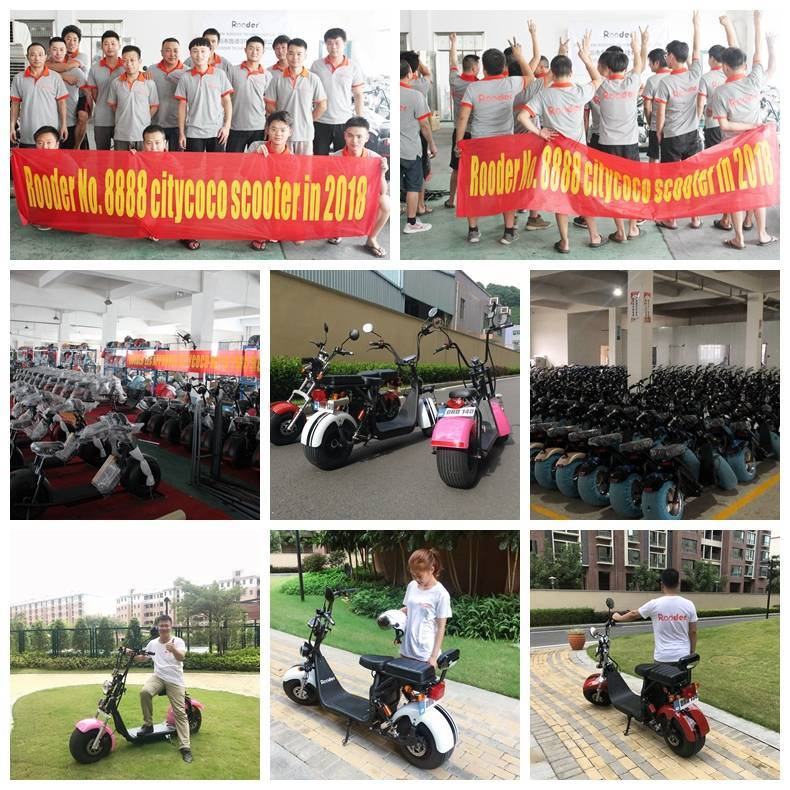hot selling eec coc citycoco electric scooter (2)