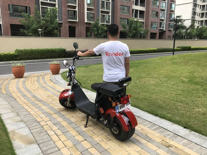 hot selling eec coc citycoco electric scooter (5)