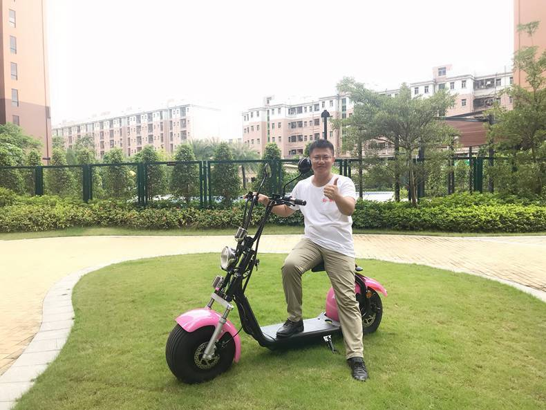 hot selling eec coc citycoco electric scooter (7)