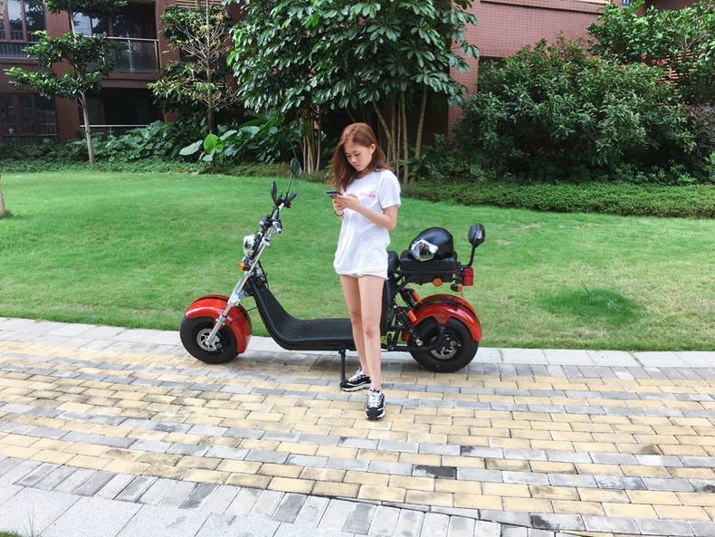 hot selling eec coc citycoco electric scooter (9)