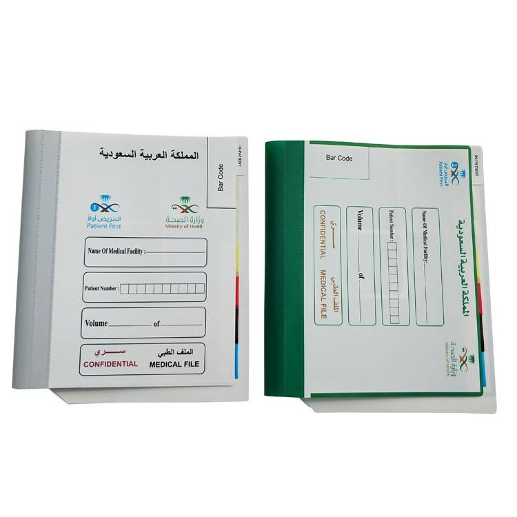 China Gold Supplier for PP Sheets from China - wholesale file folder a4 pocket  folder with logo printing – Ruiyinxiang