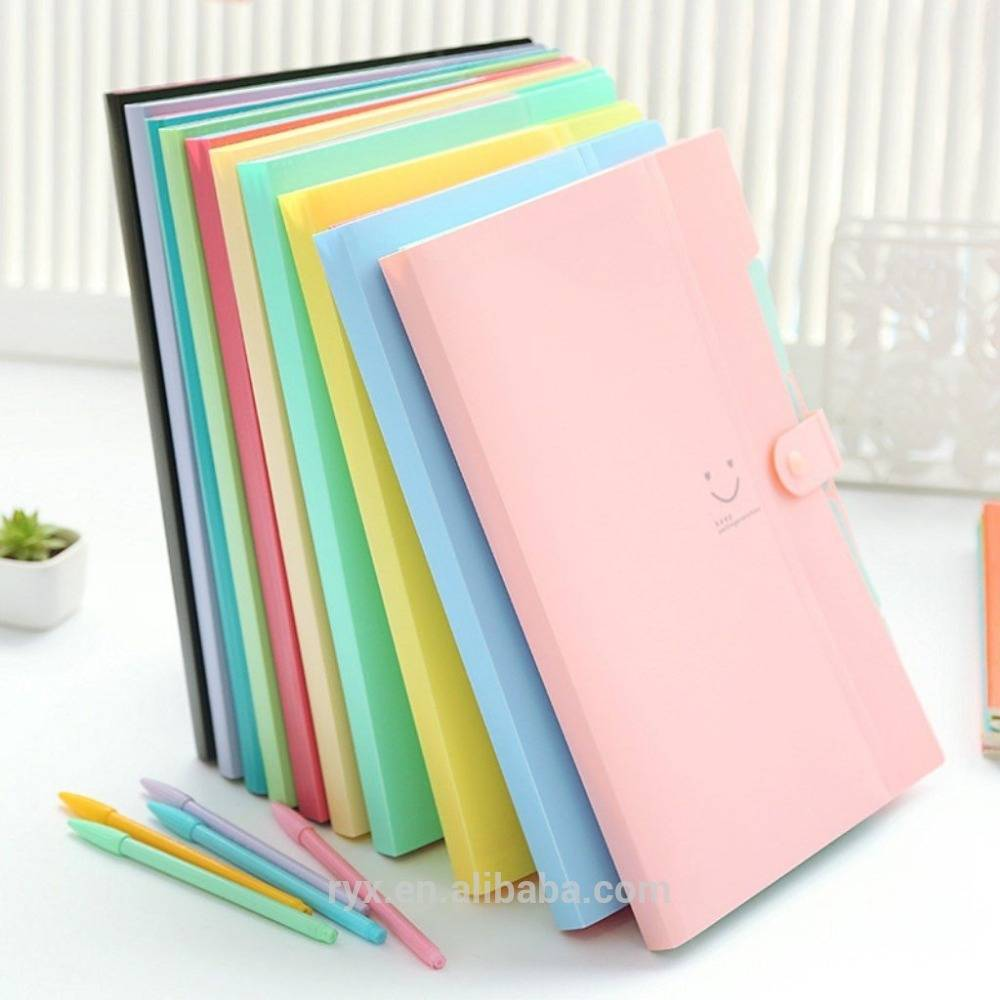 New Arrival China Self-standing Expanding File Folder -