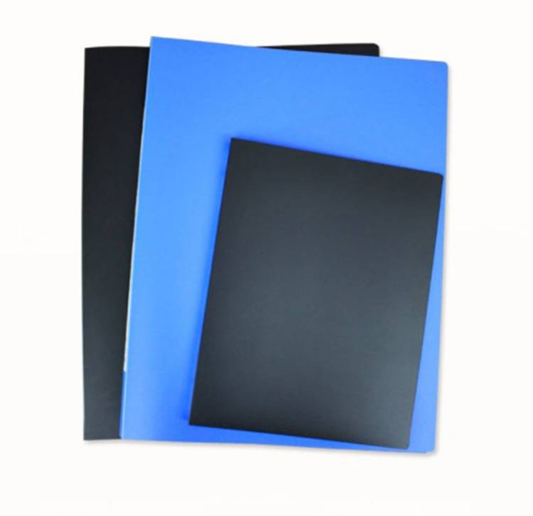 A1 Size Plastic File Folder with Sheet Protectors  Display book