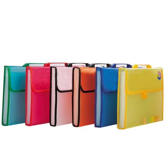 Good Quality File Folder - Wholesale price 13 pockets A4 pp plastic expanding file folder accordion document organizer for home office – Ruiyinxiang