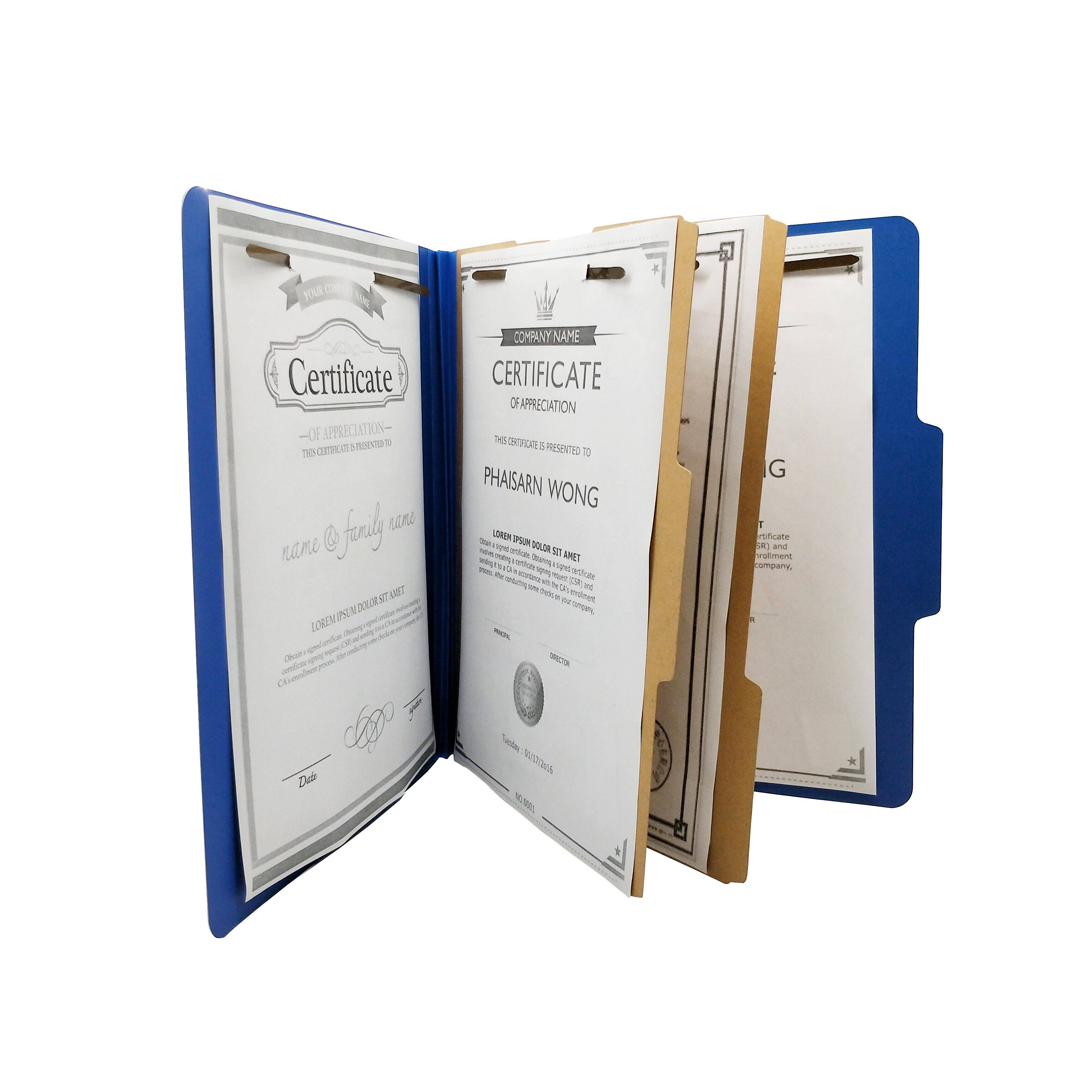 China Suppliers Pressboard Classification File Folder with Fasteners 2 Dividers for Project Business Office