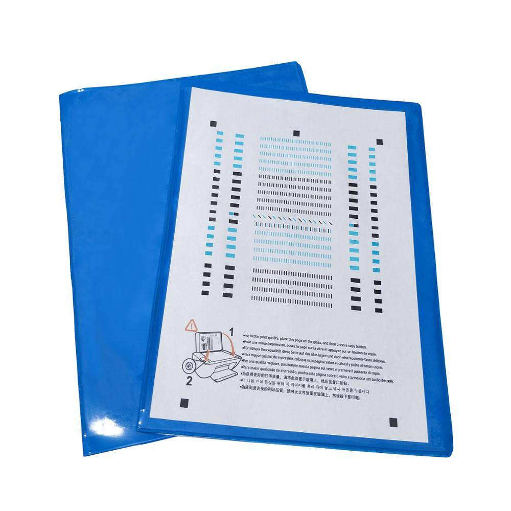 Reasonable price PVC Dry Erase Pockets - PVC File Folder With Inside Clear Pocket For Office And School – Ruiyinxiang