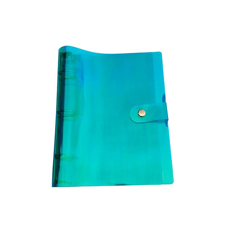 OEM China 100 Pockets Presentation Book -