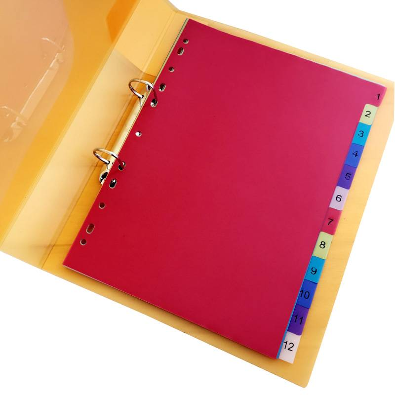 OEM Supply Dupont Paper Student Bag - Custom wholesale colorful A4 file binder tab dividers made in China – Ruiyinxiang
