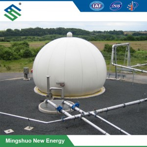 OEM Factory for Bio Fuel -