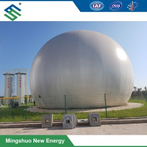 PVDF Biogas Storage Holder for Combined Heat and Power Project