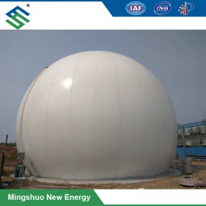 Double Membrane Biogas Storage Balloon