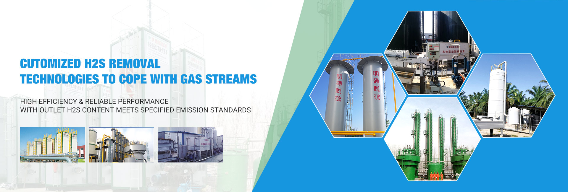 Cutomized H2S Removal Technologies to Cope with Gas Streams