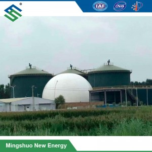 Large-Scale Anaerobic Digester Plant for Kitchen Waste Treatment