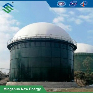 Anaerobic Digester Plant for Chicken Manure Treatment