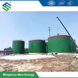 Large-Scale Biogas Plant voor suikerriet bagasse Treatment
