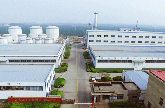 Shandong Somes Bioteknologi Co., Ltd.