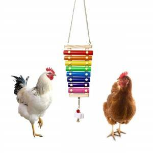 Bird Wood Iron xylophone pet chicken toys