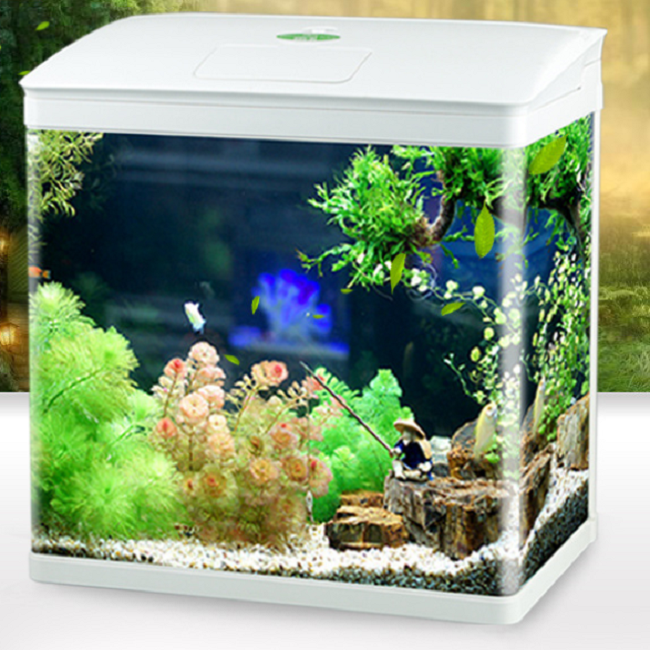 Square fish tank aquarium