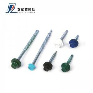 Ordinary Discount Eagle Eye For Car - RAL screw self drilling screw – Shuangzi