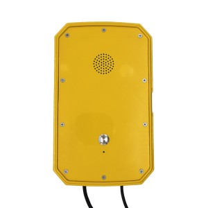 Waterproof Speakerphone Sos Hotline Telephone for Roadside