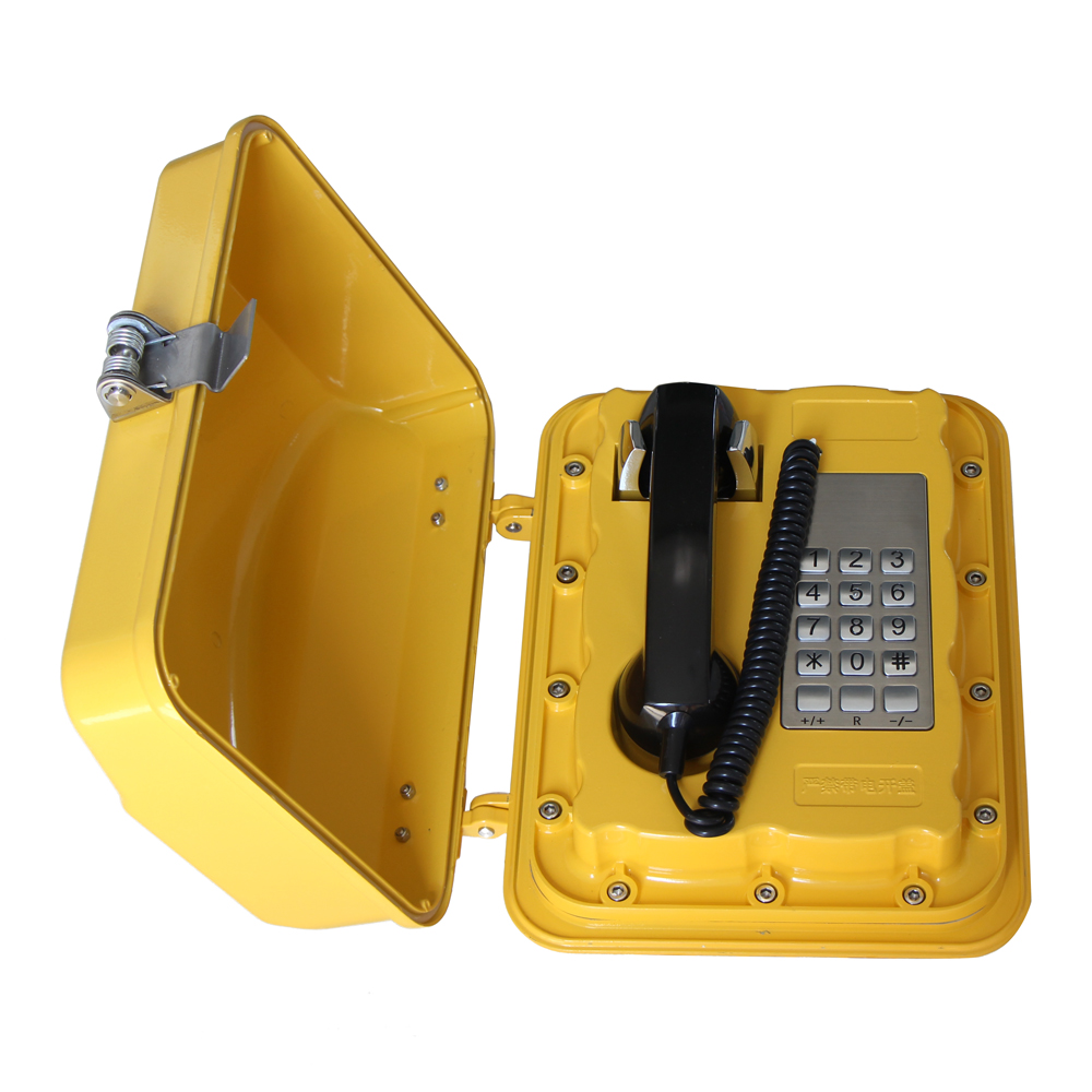 Weatherproof telephone