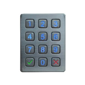 Short Lead Time for Stainless Steel Phone -