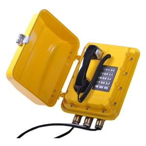 Robust construction outdoor communication telephone keypad phone explosion proof telephone–JWAT811