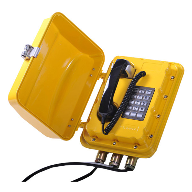 OEM/ODM Manufacturer Anti-Vandalism Handset -