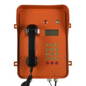 Orange bank telephone for VOIP System