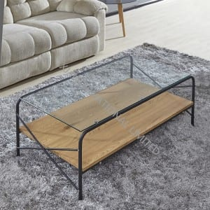 Factory Price For Chromed Bench - BT-1731 Tempered Glass Coffee Table With Metal Frame – TXJ