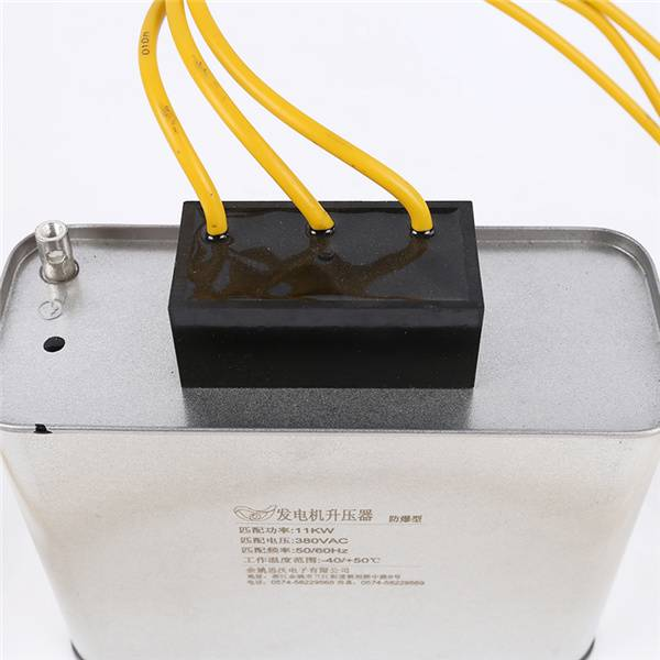 Massive Selection for Metal Halide Lamp Capacitor -