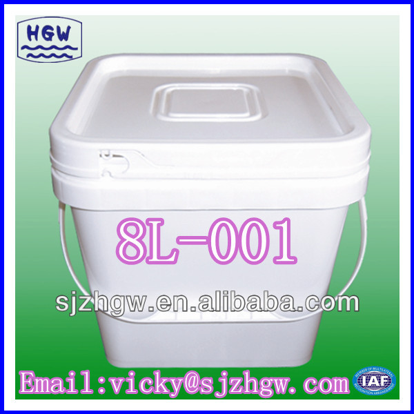 (8L-I) Faces dignissim Pail Featured Image