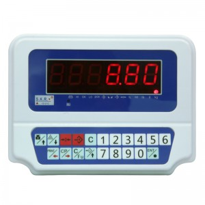 FWN-V10 Weighing Indicator With Red Letter Display