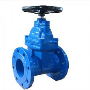 Non Batang Rising tahan banting Leuleus seated Gate valves BS 5163