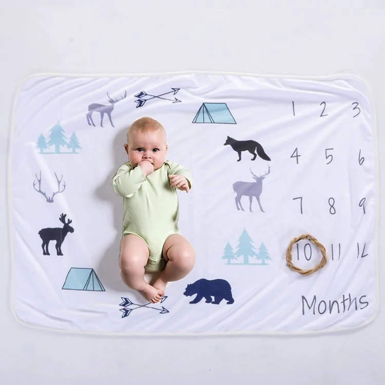 Factory Free sample Animal Design Blanket -