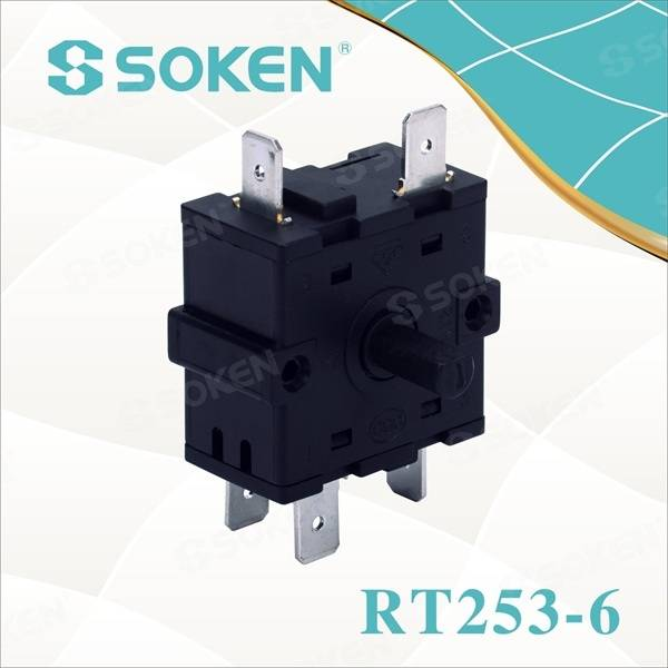 Power Switch Rotari gyda 16A 250VAC (RT253-6)